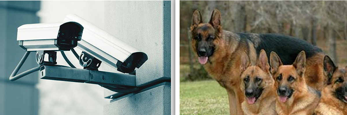Effective security solutions and the use of innovative technology in the protection of life and property